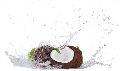 Vinilo Cracked coconuts in water splash on white