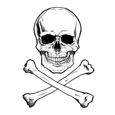 Cráneo humano en blanco y negro y las tibias cruzadas. vinilos para ...