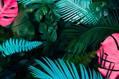 Vinilo Creative fluorescent color layout made of tropical leaves. Flat lay neon colors. Nature concept.