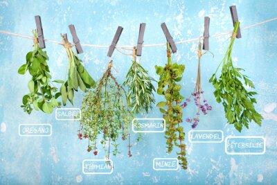Vinilo Cuelgue para secar hierbas