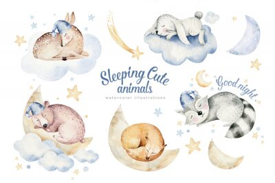 Vinilo Cute dreaming cartoon animal deer, bear hand drawn watercolor illustration. Sleeping rabbit charecher kids nursery wear fashion design, baby cartoon and fox