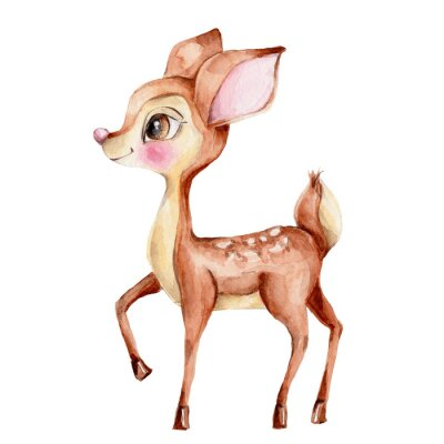 Vinilo Cute little deer; watercolor hand draw illustration; with white isolated background