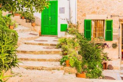 Vinilo Decoración típica de la planta en un viejo pueblo mediterráneo rústico