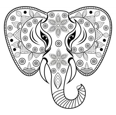 Vinilo Decorado elefante de la cabeza de vectores, testa de elefante decorado vetorial aislados en blanco