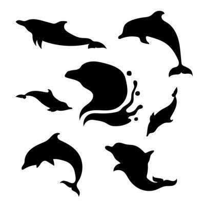 Vinilo Delfín conjunto de vectores
