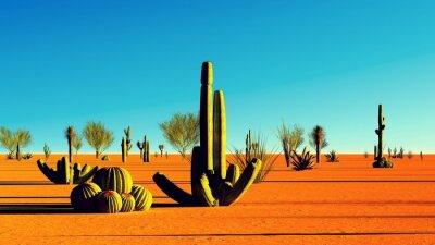 Vinilo Desierto americano