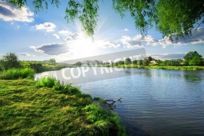 Vinilo Día soleado en un río tranquilo en verano
