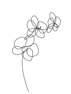 Vinilo Dibujado a mano flores de orquídeas. Ilustración de vector blanco y negro