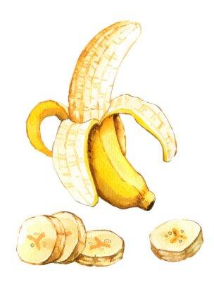 Vinilo Dibujado a mano ilustración de acuarela de plátano