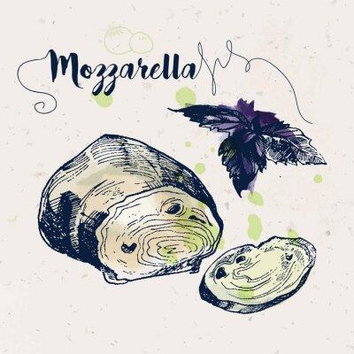 Vinilo Dibujado a mano queso mozzarella y hojas de albahaca