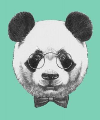 Vinilo Dibujado a mano retrato de la panda con gafas y pajarita. Vector aislados elementos.
