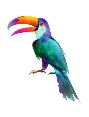 Vinilo dibujado aislados brillante pájaro sentado Toucan lado