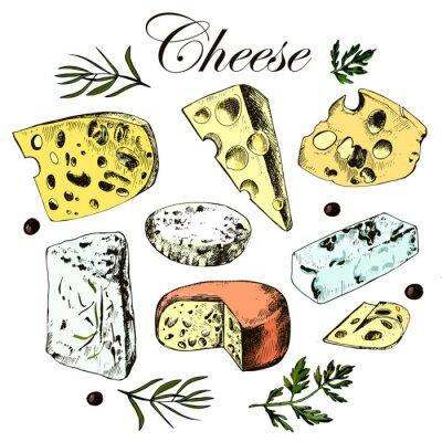 Vinilo Dibujo a mano conjunto con diferentes quesos