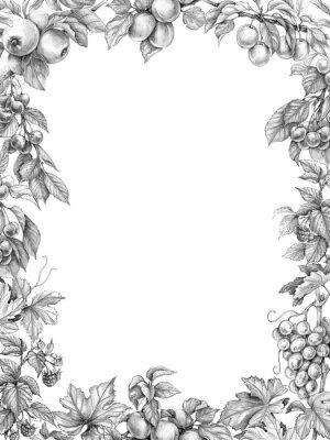 Vinilo Dibujo de lápiz de marco vertical de fruta