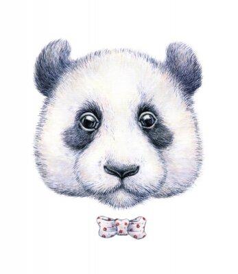 Vinilo Dibujo del color de agua de un panda en el fondo blanco