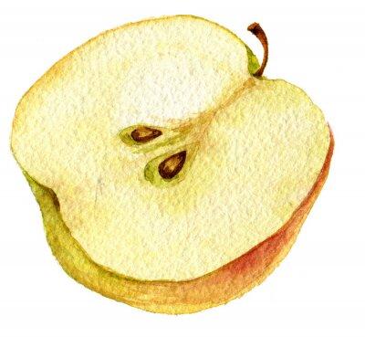 Vinilo Dibujo manzana mitad por la acuarela