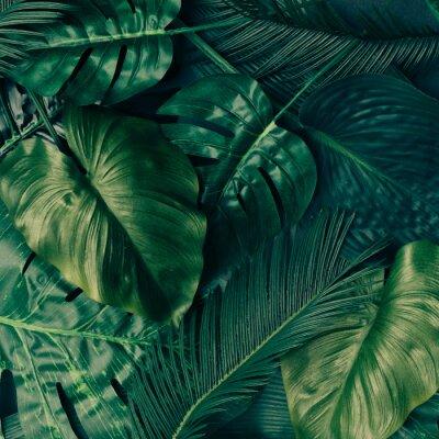 Vinilo Diseño creativo de hojas verdes tropicales. Concepto de primavera de la naturaleza. Endecha plana.