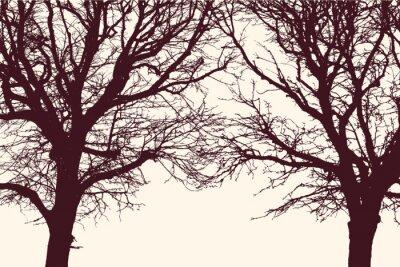 Vinilo Dos árboles