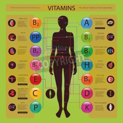 Efecto de las vitaminas en los órganos y sistemas del cuerpo vinilos ...