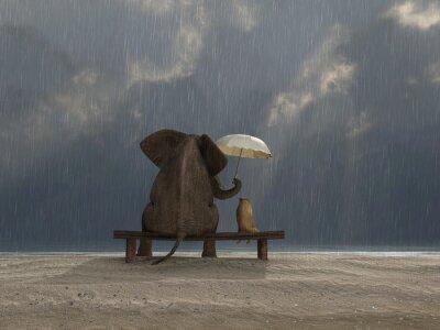 Vinilo el elefante y el perro se sientan bajo la lluvia