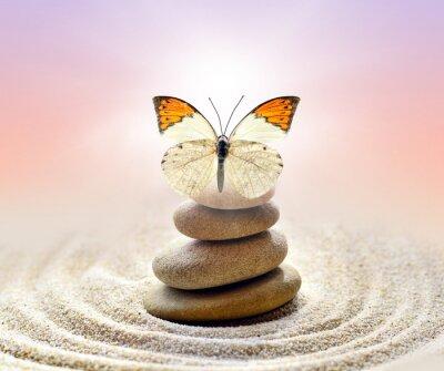 Vinilo El equilibrio de la mariposa y las piedras