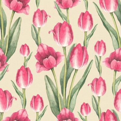 Vinilo El tulipán florece la ilustración. Acuarela patrón transparente