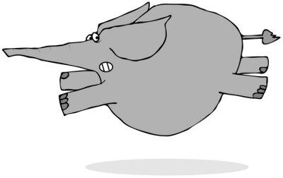 Vinilo Elefante corriendo asustado