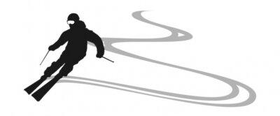 Vinilo esquiador