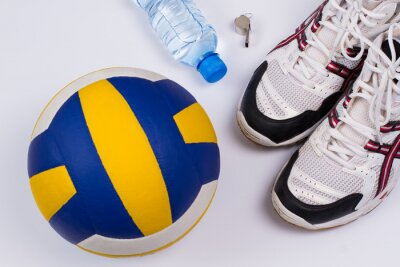 Vinilo Establece Voleibol.