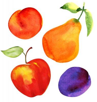 Vinilo Establezca frutas. Apple pera ciruela albaricoque.