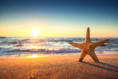 Vinilo Estrella de mar en la playa al amanecer