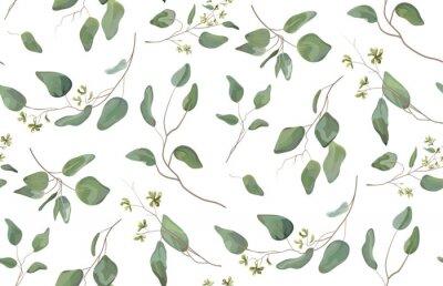 Vinilo Eucalipto árbol diferente, follaje ramas naturales con hojas verdes semillas tropicales de patrones sin fisuras, estilo acuarela. Vector decorativo hermoso lindo elegante ilustración aislado fondo bla