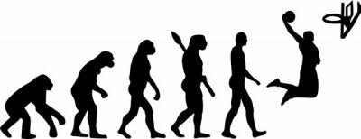 Vinilo Evolución del baloncesto