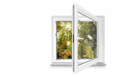 Vinilo Fenster 30