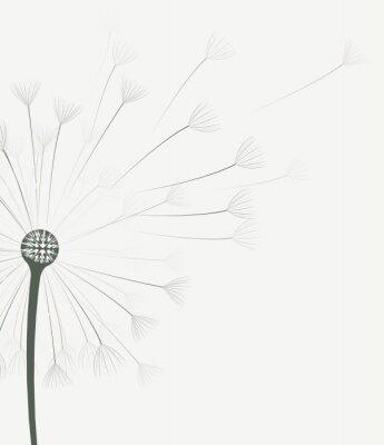 Vinilo Flor del diente de león del vector