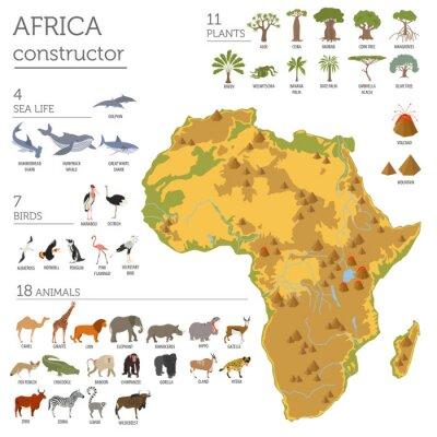 Vinilo Flora y fauna planas de África, elementos del constructor del mapa. Animales, b