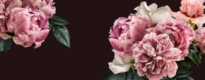Vinilo Floral banner, flower cover or header with vintage bouquets. Pink peonies, white roses isolated on black background.