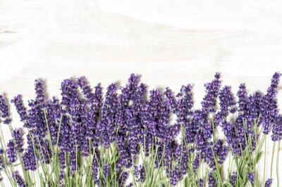 Vinilo Flores de lavanda sobre blanco de madera de textura de fondo