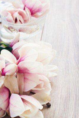 Vinilo flores de magnolia