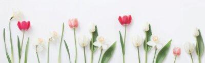 Vinilo flores de primavera sobre fondo blanco