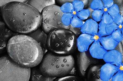 Vinilo Flores y piedras