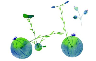Vinilo Flower bike. Hand drawn watercolor illustration on paper. Green and blue bicycle flower with calyx round fruit buds briar and leaves. Isolated on white background