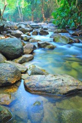 Vinilo Flujo de agua a través de las rocas en un arroyo poco profunda en Malasia Selva