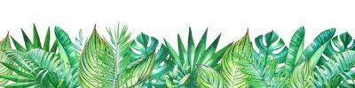 Vinilo Fondo con acuarela plantas tropicales. Útil para el diseño de pancartas, tarjetas, saludos, invitaciones y muchos otros.