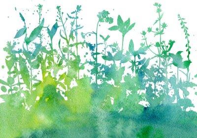 Vinilo Fondo con dibujo de hierbas y flores