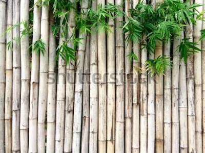 Vinilo Fondo de bambú natural