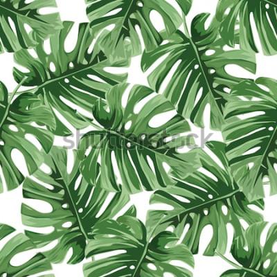 Vinilo Fondo de verano Hojas de palmeras tropicales, selva deja patrón floral transparente de vector.