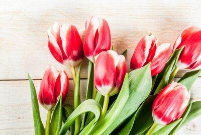Vinilo Fondo para felicitaciones, tarjetas de felicitación. Flores de tulipanes de primavera fresca, en el espacio de copia de la vista superior de fondo blanco de madera