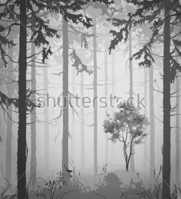 Vinilo forest air landscape with birds, black and white, vector illustration