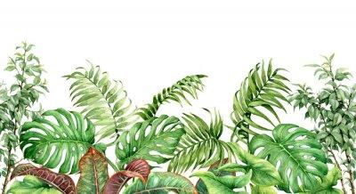 Vinilo Frontera sin costuras de plantas tropicales